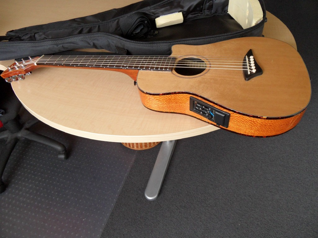 Dean Gypsy Guitar Acoustic Electric Traveller Guitar